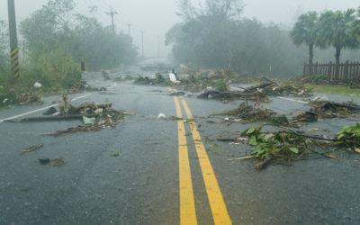Preparing your business for hurricane season