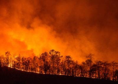 California Wildfire Occurrences Highest in October